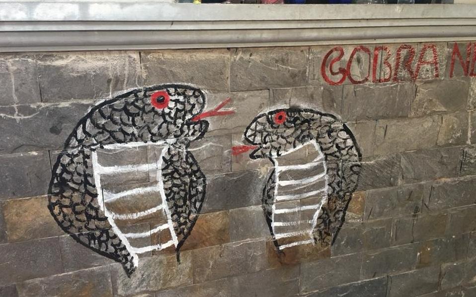 cobra bar