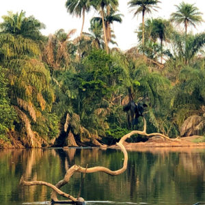 DISCOVERING THE WONDERS OF WEST AFRICA